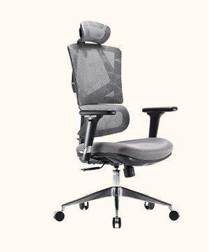 Sihoo Ergonomic Chair M90D
