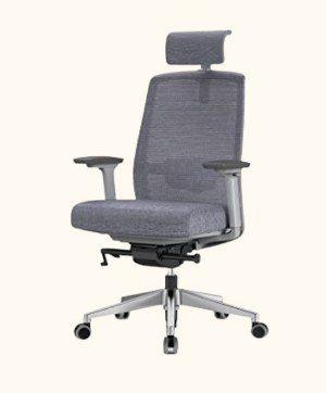 Duwinson Ergonomic Mesh Home Office Chair