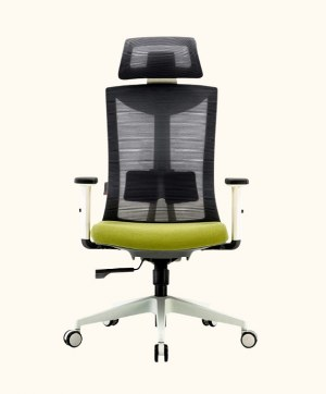 Umi Ergonomic office chair