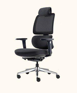 ALFA Furnishing Ergonomic Office Chair