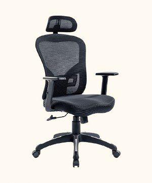 RYANGEL Ergonomic Office Chair