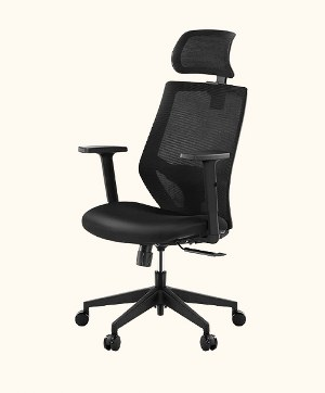 Tribesigns Office Chair - T18