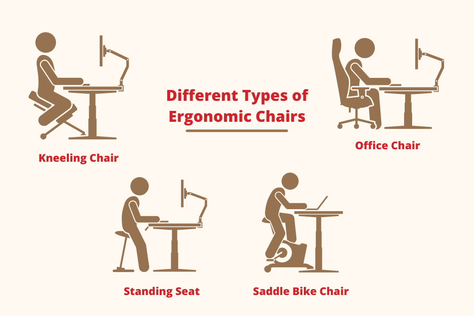 Are Ergonomic Chairs Good for Your Back